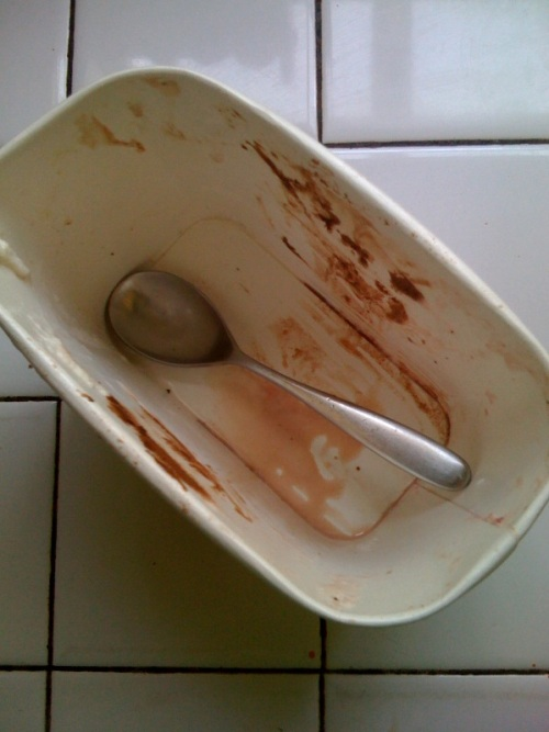 I ate too much ice cream and now i feel sick my husband is annoying ice cream container empty thecheapjerseys Image collections